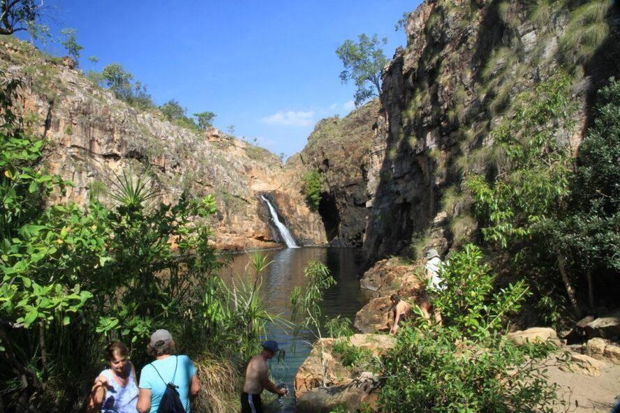 Maguk Gorge Barramundi- Kakadu National Park