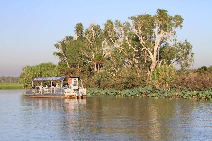 Yellow Water Billabong - Kakadu National Park. Famous  Yellow Waters Wetlands Boat cruise