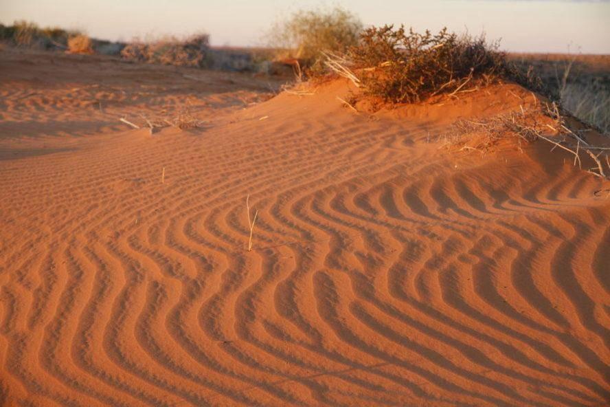 Batton Hills - Hay River Track - Sand Dunes Trayon Campers. Simpson Desert.