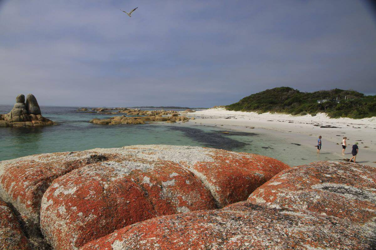 Bay of Fires - East Coast of Tasmania. turquoise coloured ocean breaking onto beautiful white beaches fringed with huge boulders draped with iconic orange lichen.