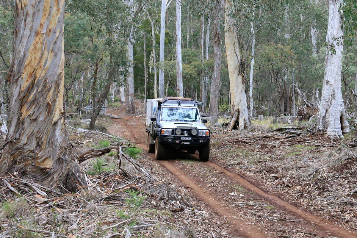 Coolah Tops National Park Camping Guide, 4WD Tracks. Talbragar River Trail