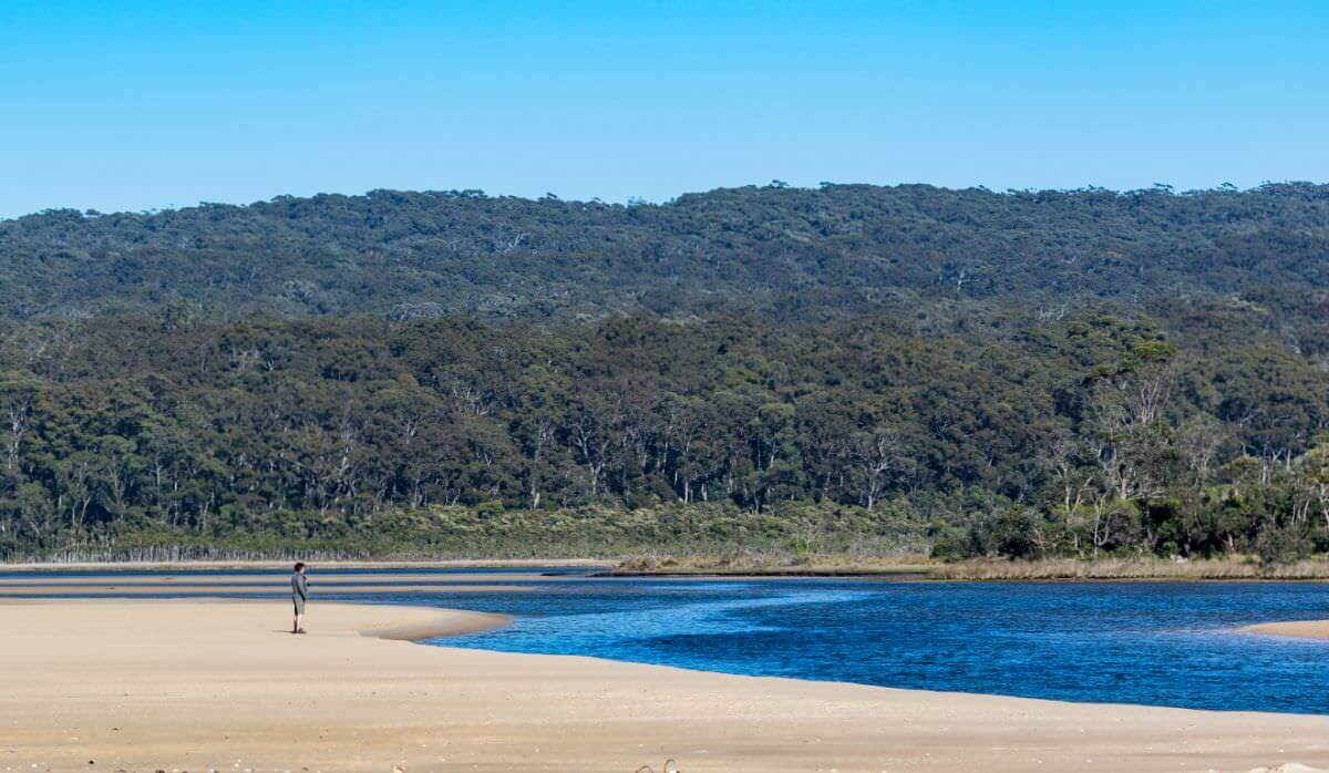 Croajingolong National Park - Wingan Inlet Fly Fish Cove walking track off west wingan road.