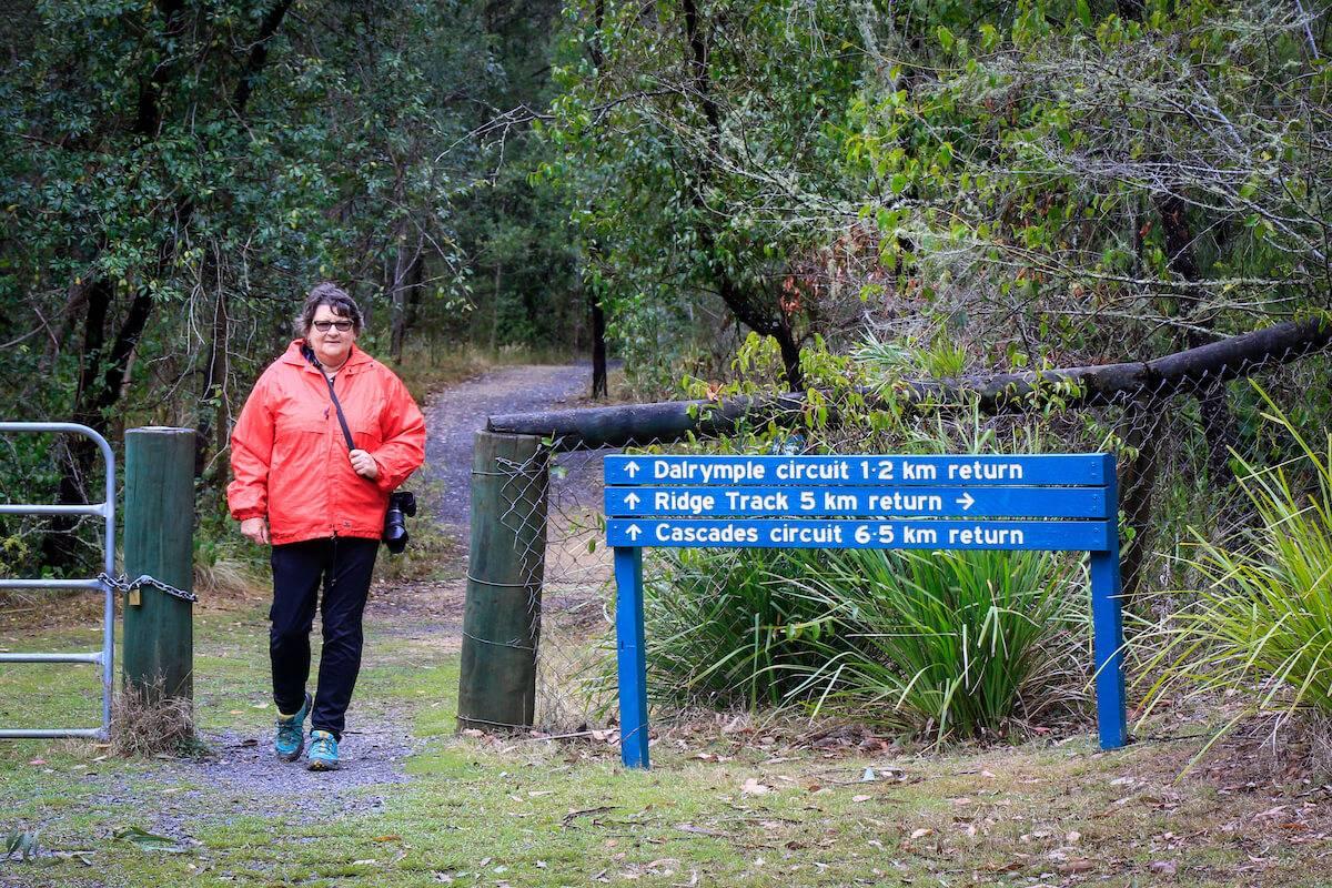 Dairymple Circuit Walking Track Main Range National Park