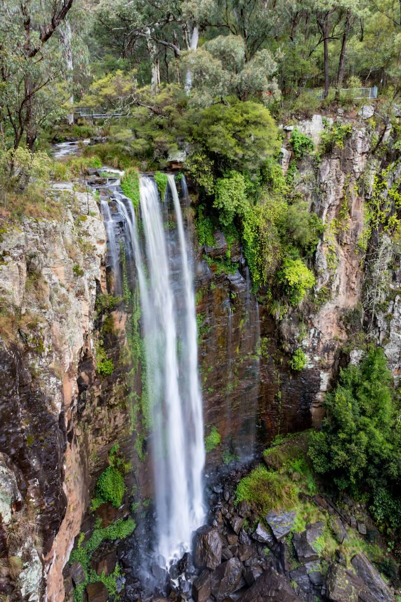 Queen Mary Falls Main Range National Park Queensland
